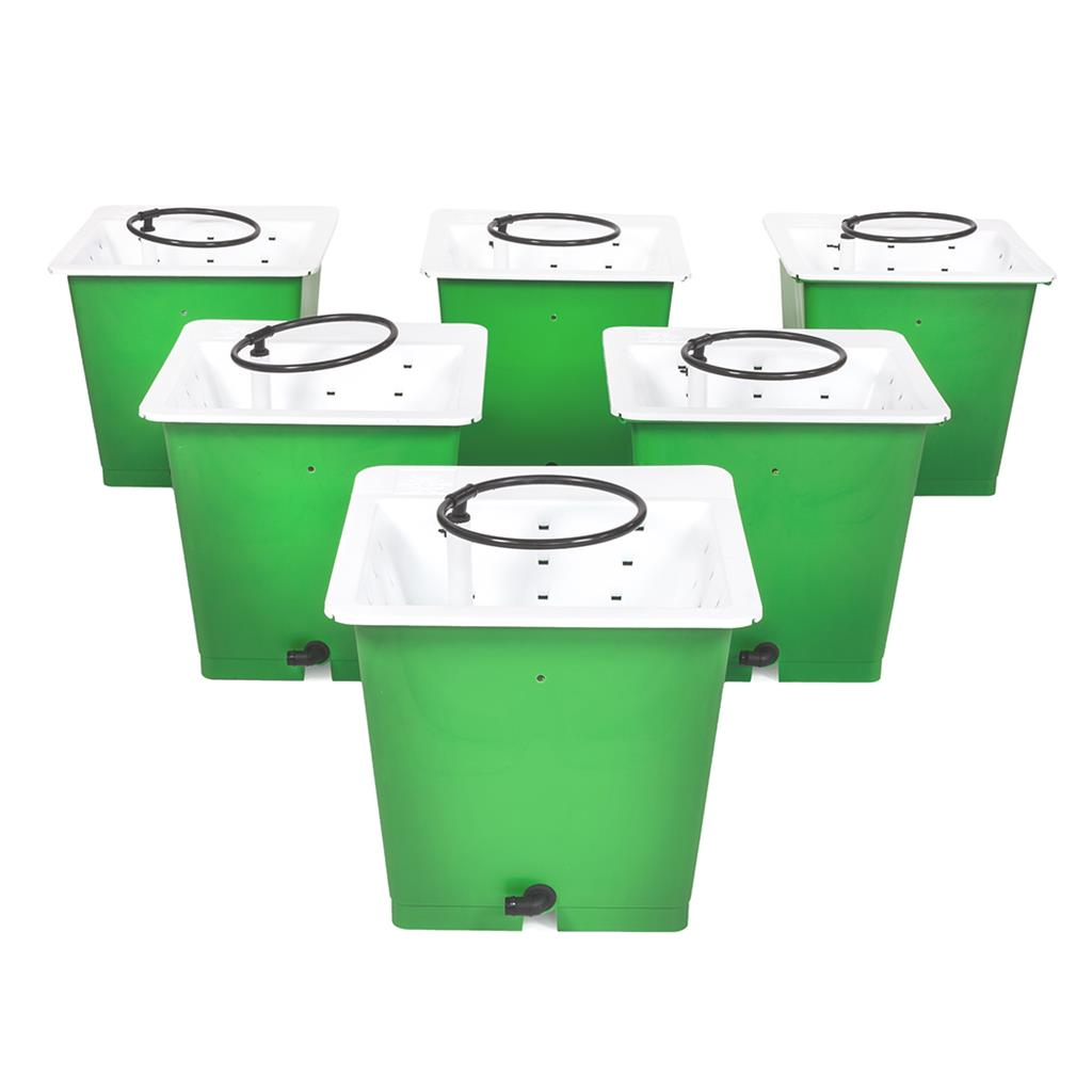 GREEN MAN Combi Kit 6 Pot Package