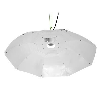Sun King Parabolic Medium Reflector - White