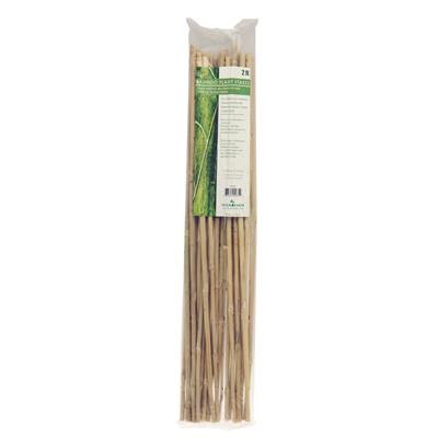 3' Bamboo Stakes (90cm) - Pack of 25