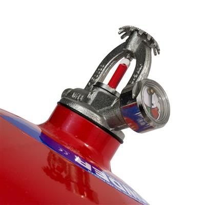 Dry Powder Automatic Extinguisher - 2kg