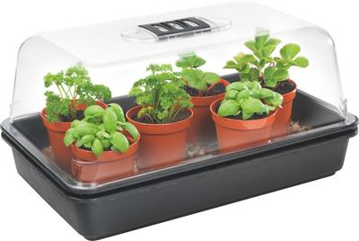 Stewart's Medium Heated Propagator