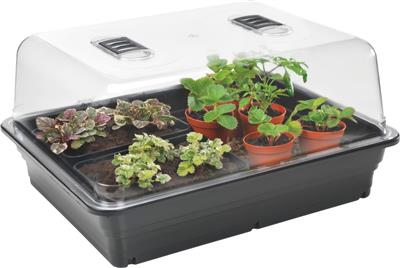 Stewart's Large Heated Propagator