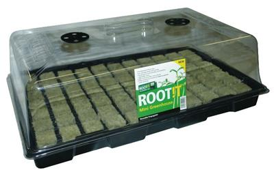 Cultilène CRB 35mm & ROOT!T Propagator Bundle